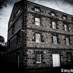 Port Arlington Mill